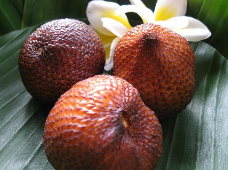 Salak - oleh-oleh khas Bali